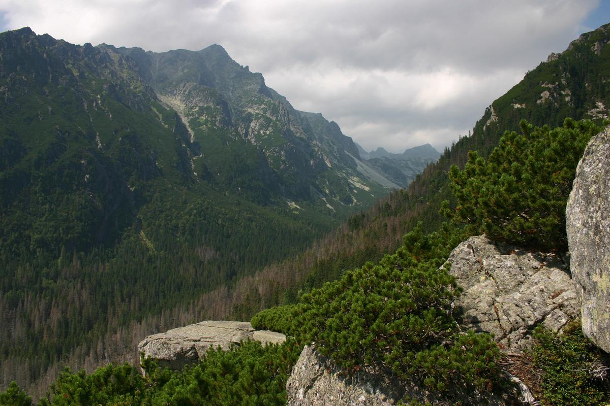 Velká Studená dolina II