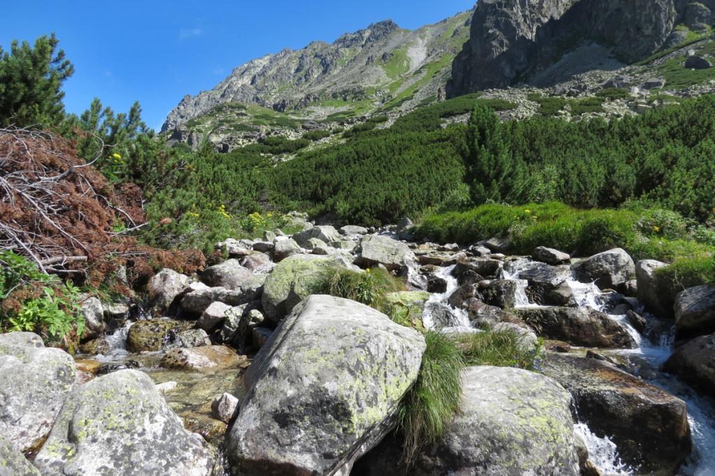 Potok Mlynica