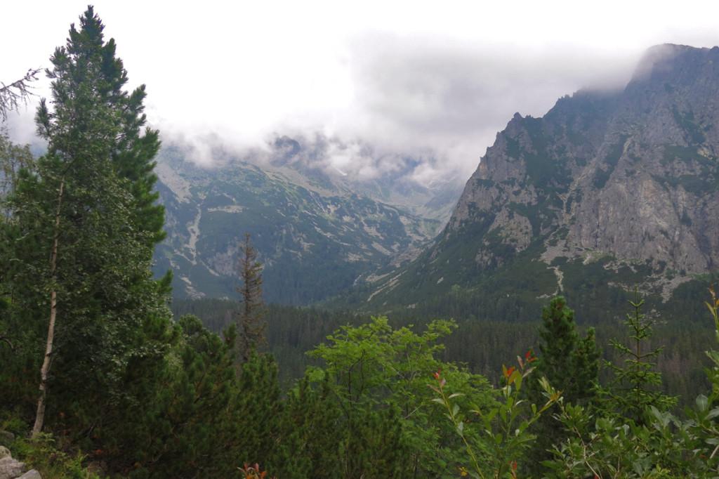 Ústí Zlomiskové doliny